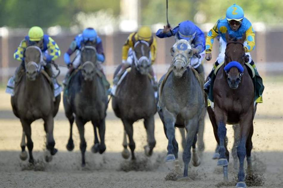 Get Ready For Betting On The Belmont Stakes