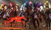 2013 Preakness Stakes Preview