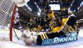 Boston Bruins Hockey