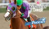 California Chrome Horse Profile